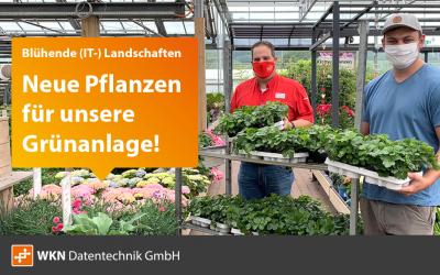 Blühende (IT-) Landschaften: Pflanzen für die Grünanlage